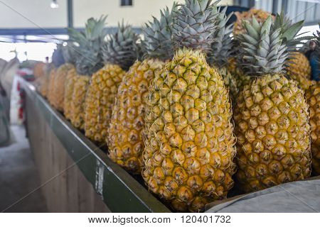 Pineapples on a local market in Nadi, Fiji