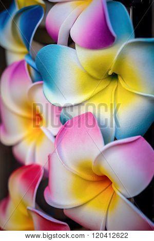 Colorful plastic plumeria lei