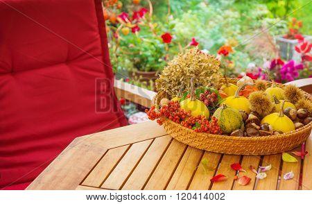 Terrace In Autumn