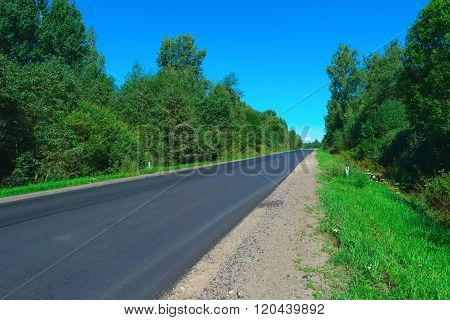 Empty highway and green forest