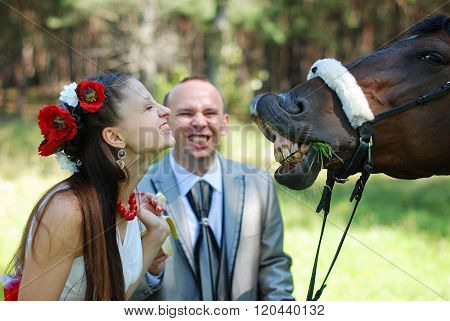 Beautiful bride teasing horse shows her teeth. Summer sunny day