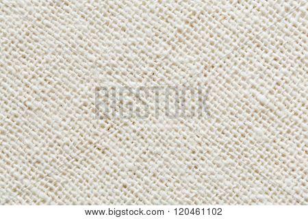 Cotton Cloth Texture