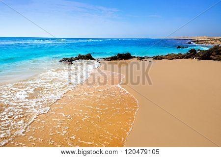 beautiful beach in fuerteventura spain