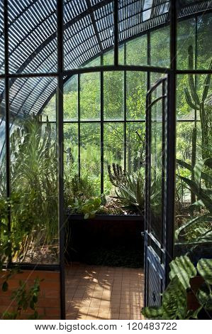 Old French Greenhouse