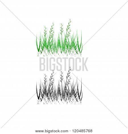 grass, shrubs. Textures illustrated images