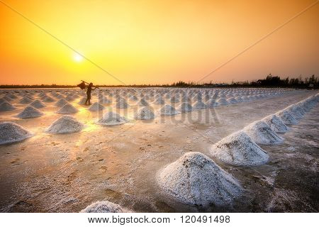 Rear view of worker holding basket in salt farm