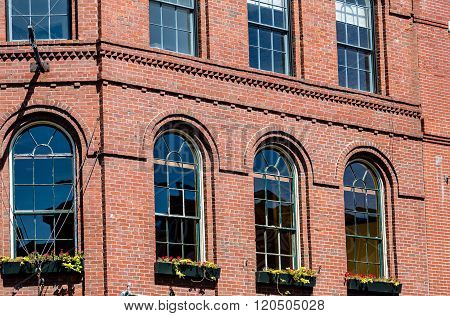 Window Boxes In Paladium Windows In Portland