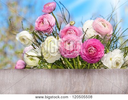 Ranunculus Behind Old Wooden Board