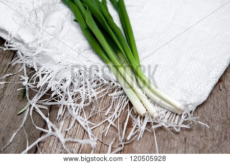 Green Onions On Wood Background