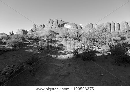 The Skyline Arch At Arches National Park Utah (black And White)