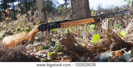 Rifle And Sky