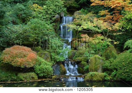 Japanese Water Fall