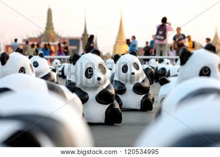 1600 Pandas+ World Tour in Thailand