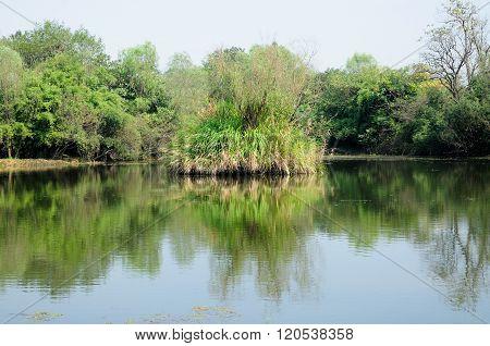 Xixi Wetland Park Hangzhou