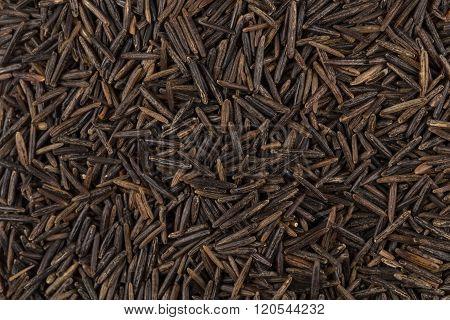 Background Of Black Wild Rice
