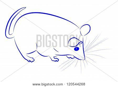 Contour Of Mouse