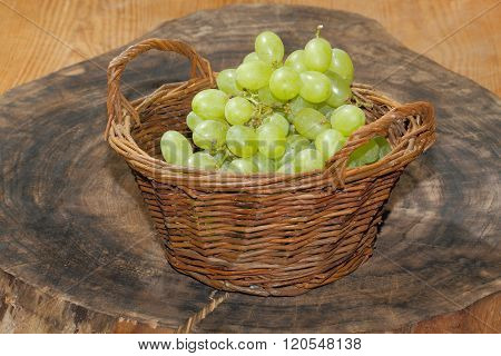 Freshly harvested grapes in a basket on a wooden board