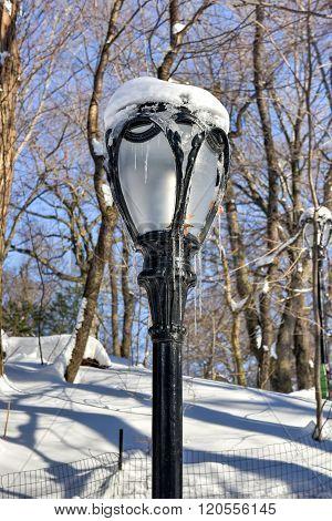 Central Park Frozen Lamp