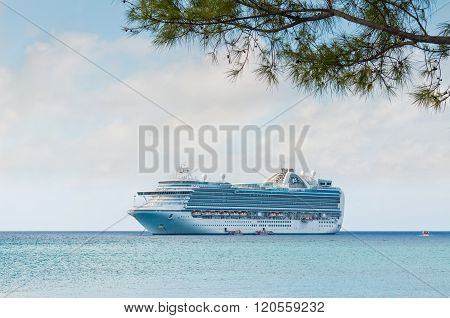 Branch Of A Tree On A Tropical Beach With Cruise Ship In The Background