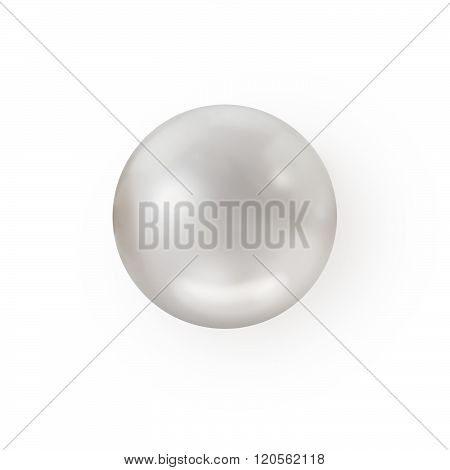 Photo of single white pearl isolated on white