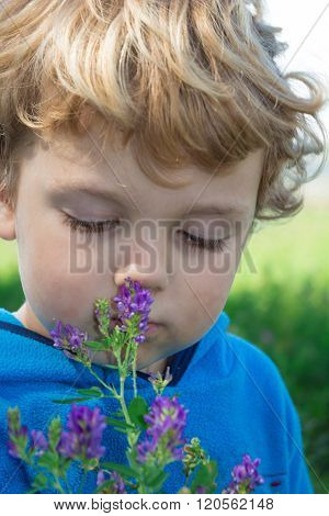 Portrait Of Boy Smelling Flowers In A Farm Field