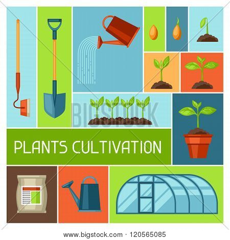 Background with agriculture objects. Instruments for cultivation, plants seedling process, stage pla
