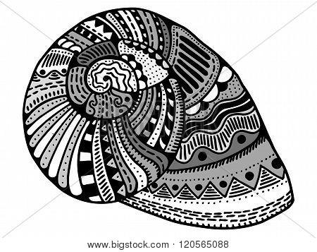 Zentangle Stylized Shell