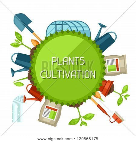 Concept with agriculture objects. Instruments for cultivation, plants seedling process, stage plant