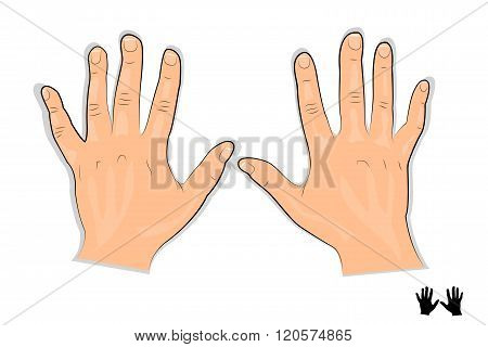illustration of a mans hands to advertise any products for hands