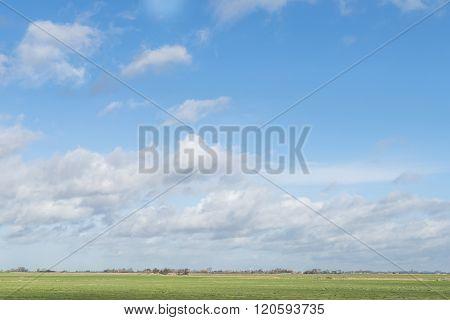 Pasture At Rijs.