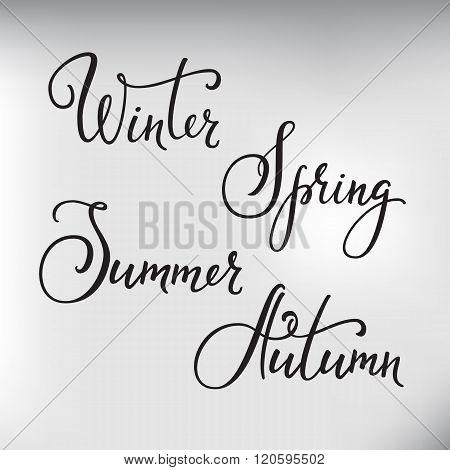 Vector Lettering Seasons Set