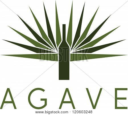 Agave And Bottle Vector Design Template . Concept Of Graphic Clipart Work