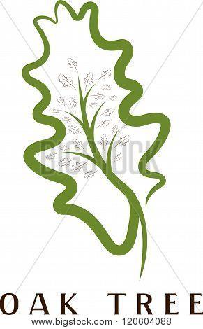 Vector Illustration Of Oak Tree In The Leaf