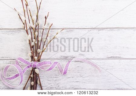 Pussy willow branch with lila ribbon on a wooden background top view