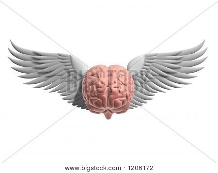 Flying Brain