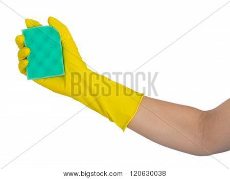 Human Hand In Rubber Glove Holding A Washing Sponge
