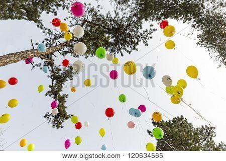 Rare Diseases Balloons