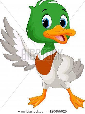 Cute baby duck waving its wings