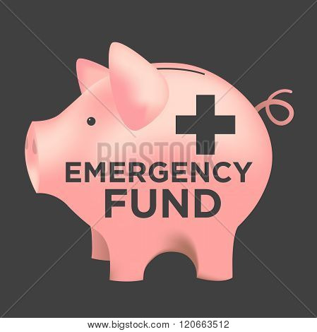 Financial Emergency Fund Piggy Bank
