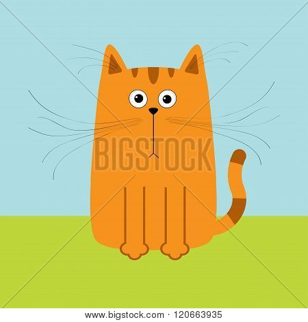 Cute Red Orange Cartoon Cat. Big Mustache Whisker. Funny Character. Sky And Grass. Flat Design.