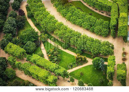 Tuileries garden in Paris France perspective view