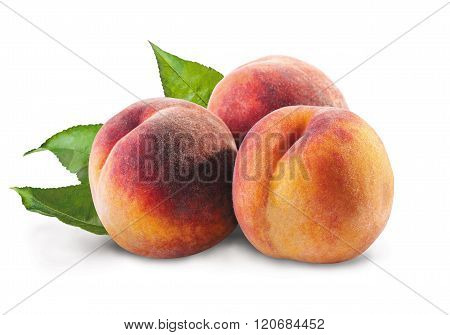 Three peaches on a white background. Close-Up