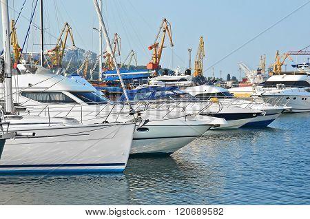 Motor Yacht In Jetty