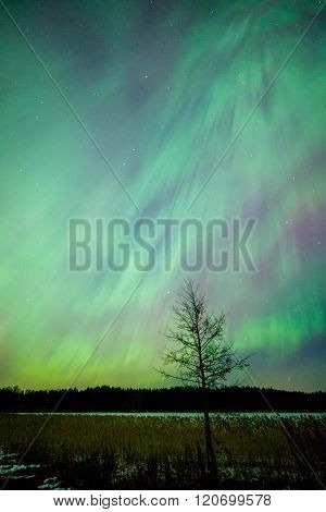 Northern lights aurora borealis landscape