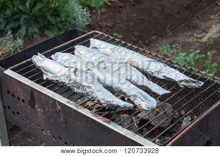 Preparation Of Fish In Foil On A Grill