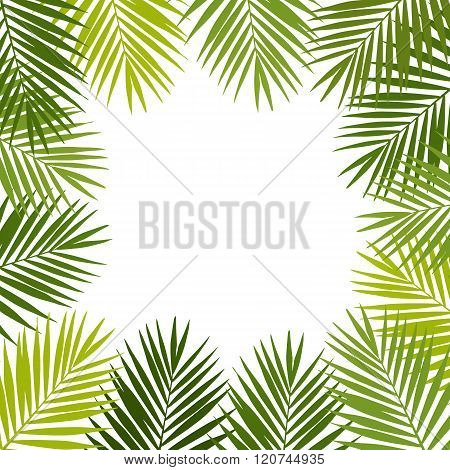 Palm leaf silhouettes frame. Tropical leaves. Vector illustration