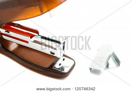 Plastic Stapler And Staples