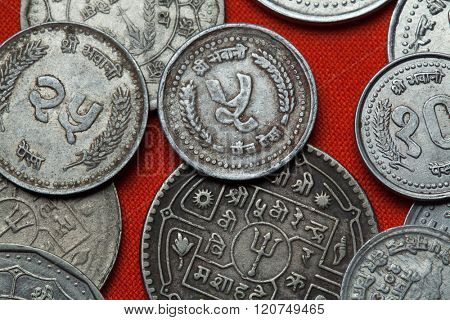 Coins of Nepal. Nepalese five paisa coin.