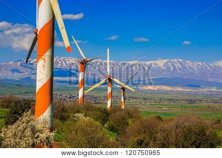 The blossoming Golan heights in a sunny day. Some huge modern windmills. In the distance snow-covered Hermon is seen. Israel