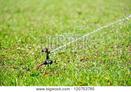 Working Water Sprinkler